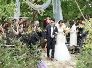 wedding party wawacinema